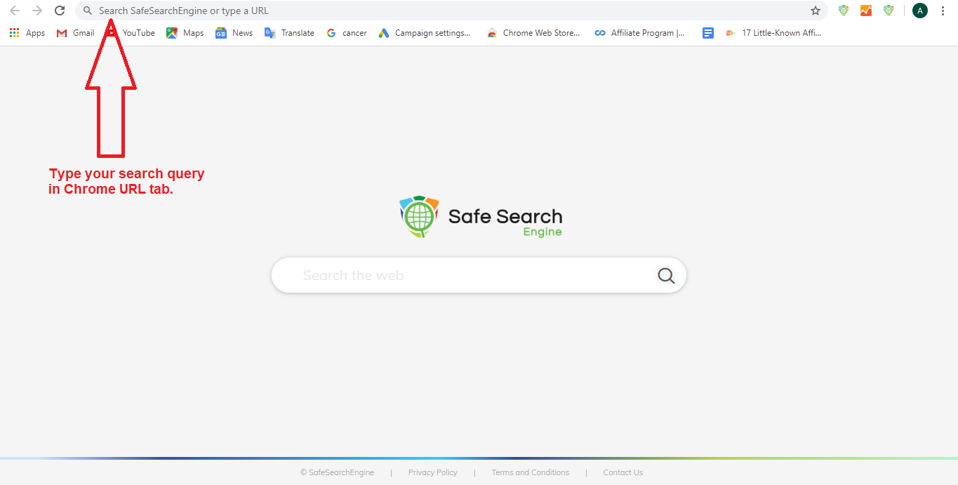 Type safesearch query